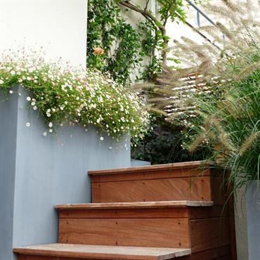Escalier extérieur en bois sur une terrasse
