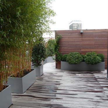 Terrasse en lames de bois exotique bordée de jardinières en aluminium avec bambous. Palissade en bois et pergola bioclimatique.