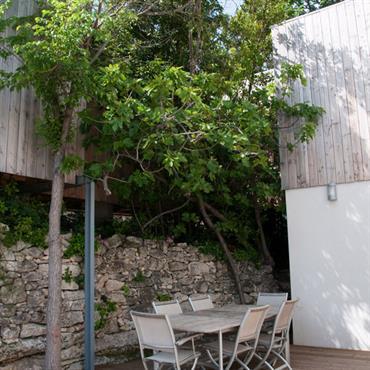 Patio en bois et végétation arborescente