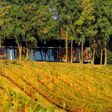 Maison contemporaine dissimulée derrières les arbres. Grand jardin potager en premier plan.