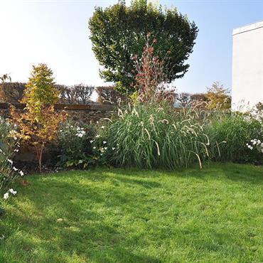 Aménagement du petit jardin de ville avec haie paysagée et espace engazonné