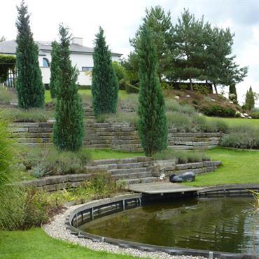 Jardin méditerranéen avec bassin