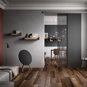 VISIO Portes de 120x240 cm Verre : Transparent avec bandes grises