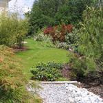 Jardin avec nombreuses plantes