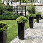 Jardin architecturé avec dallage en pavés de grès