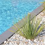 Bord de piscine paysagé