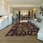 Salon en longueur meublé design