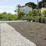 Toiture terrasse végétalisée
