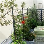 Terrasse sur balcon avec rambarde métallique et plantes grimpantes